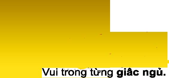Ghế lười hạt xốp Night